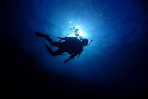 これこそがダイビングの最大の魅力!